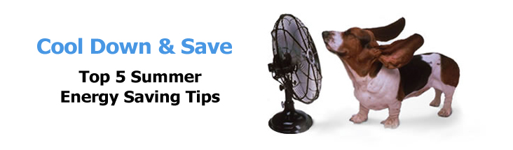 Energy Saving Tips For Summer staycool2